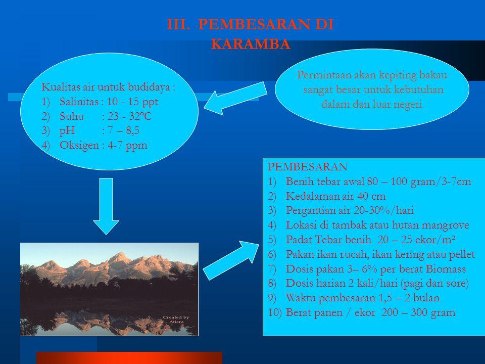 III. PEMBESARAN DI KARAMBA Permintaan akan kepiting bakau sangat besar untuk kebutuhan dalam dan luar negeri PEMBESARAN 1)Benih tebar awal 80 – 100 gr