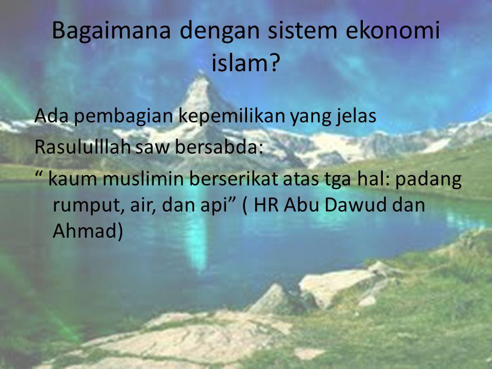 Bagaimana dengan sistem ekonomi islam?