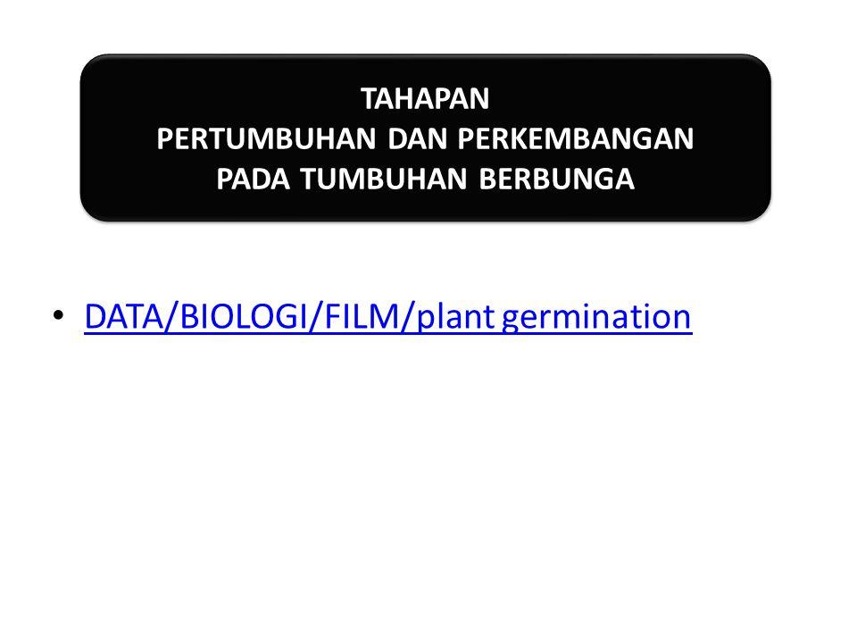 DATA/BIOLOGI/FILM/plant germination TAHAPAN PERTUMBUHAN DAN PERKEMBANGAN PADA TUMBUHAN BERBUNGA