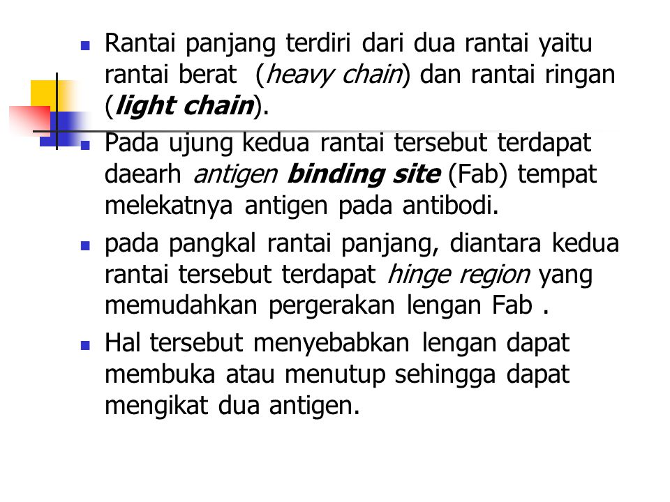 Rantai panjang terdiri dari dua rantai yaitu rantai berat (heavy chain) dan rantai ringan (light chain).