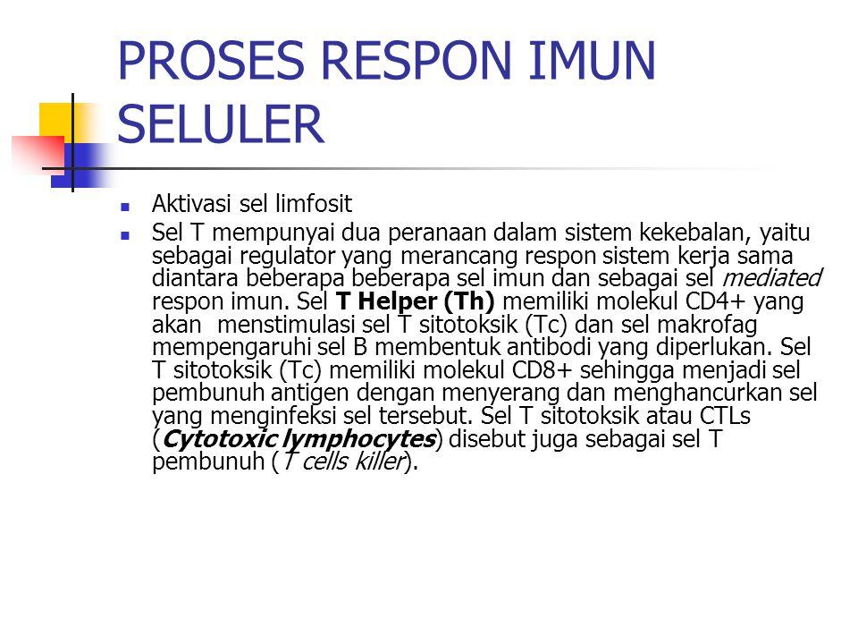 PROSES RESPON IMUN SELULER Aktivasi sel limfosit Sel T mempunyai dua peranaan dalam sistem kekebalan, yaitu sebagai regulator yang merancang respon sistem kerja sama diantara beberapa beberapa sel imun dan sebagai sel mediated respon imun.