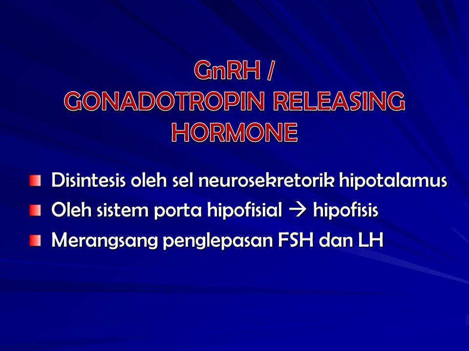 Disintesis oleh sel neurosekretorik hipotalamus Disintesis oleh sel neurosekretorik hipotalamus Oleh sistem porta hipofisial  hipofisis Oleh sistem porta hipofisial  hipofisis Merangsang penglepasan FSH dan LH Merangsang penglepasan FSH dan LH