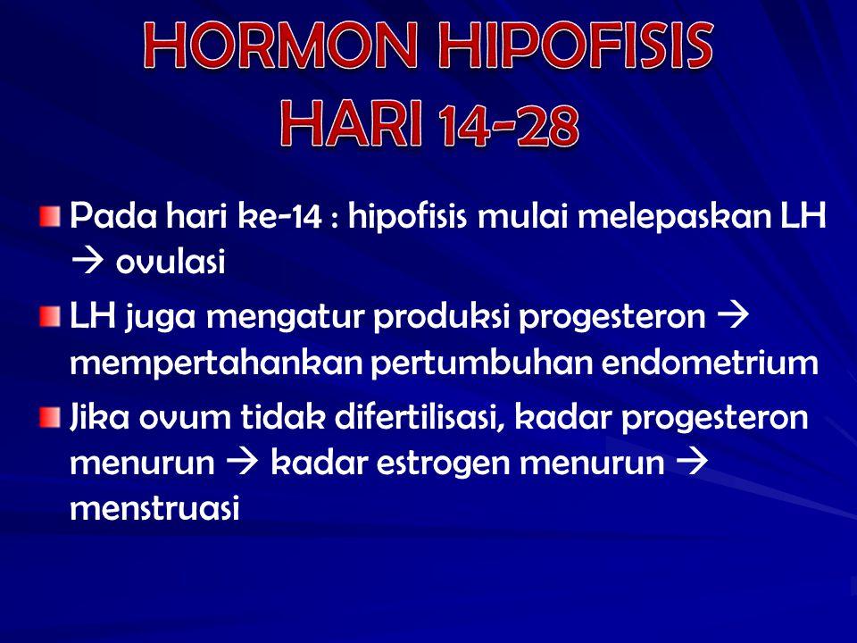 Pada hari ke-14 : hipofisis mulai melepaskan LH  ovulasi LH juga mengatur produksi progesteron  mempertahankan pertumbuhan endometrium Jika ovum tid