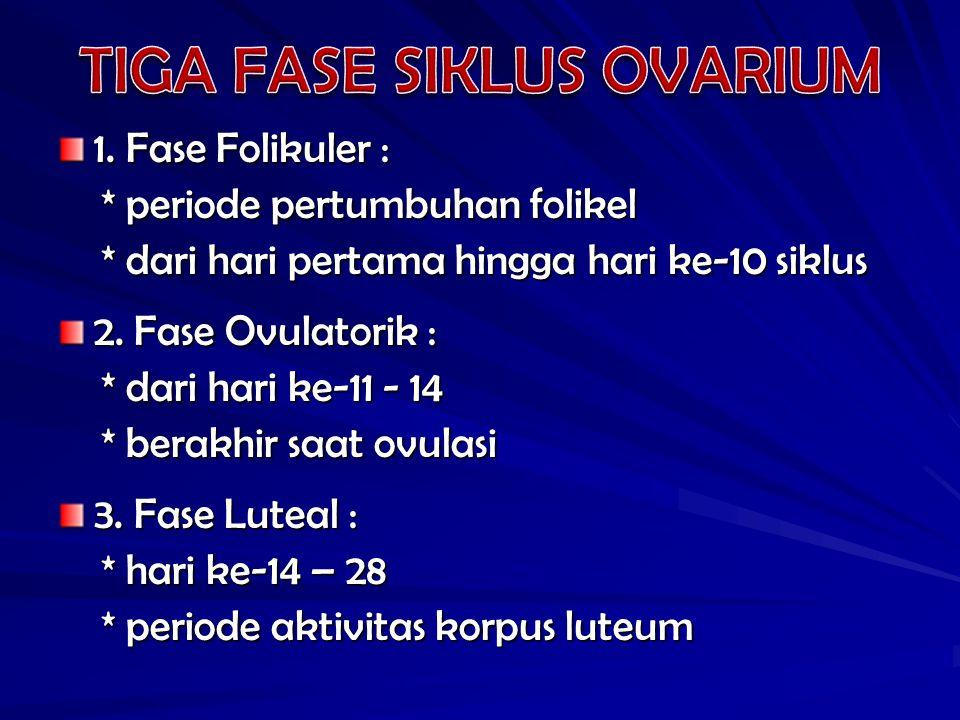 1. Fase Folikuler : * periode pertumbuhan folikel * periode pertumbuhan folikel * dari hari pertama hingga hari ke-10 siklus * dari hari pertama hingg