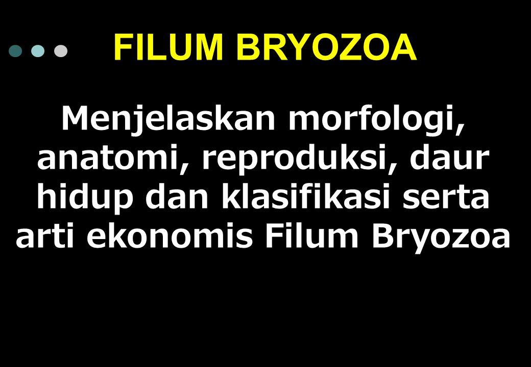 Menjelaskan morfologi, anatomi, reproduksi, daur hidup dan klasifikasi serta arti ekonomis Filum Bryozoa FILUM BRYOZOA
