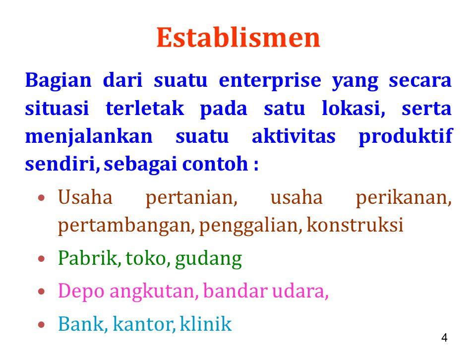 4 Establismen Bagian dari suatu enterprise yang secara situasi terletak pada satu lokasi, serta menjalankan suatu aktivitas produktif sendiri, sebagai contoh : Usaha pertanian, usaha perikanan, pertambangan, penggalian, konstruksi Pabrik, toko, gudang Depo angkutan, bandar udara, Bank, kantor, klinik