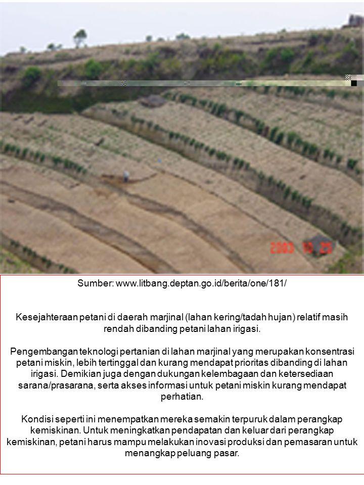 Sumber: www.litbang.deptan.go.id/berita/one/181/ Kesejahteraan petani di daerah marjinal (lahan kering/tadah hujan) relatif masih rendah dibanding pet