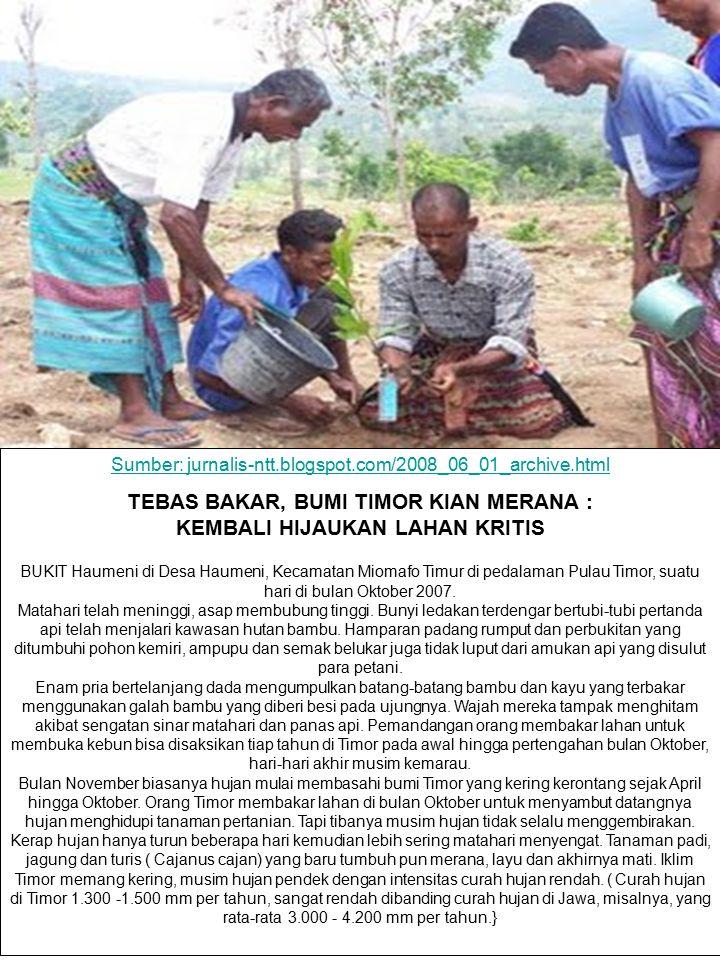 Sumber: jurnalis-ntt.blogspot.com/2008_06_01_archive.html TEBAS BAKAR, BUMI TIMOR KIAN MERANA : KEMBALI HIJAUKAN LAHAN KRITIS BUKIT Haumeni di Desa Ha