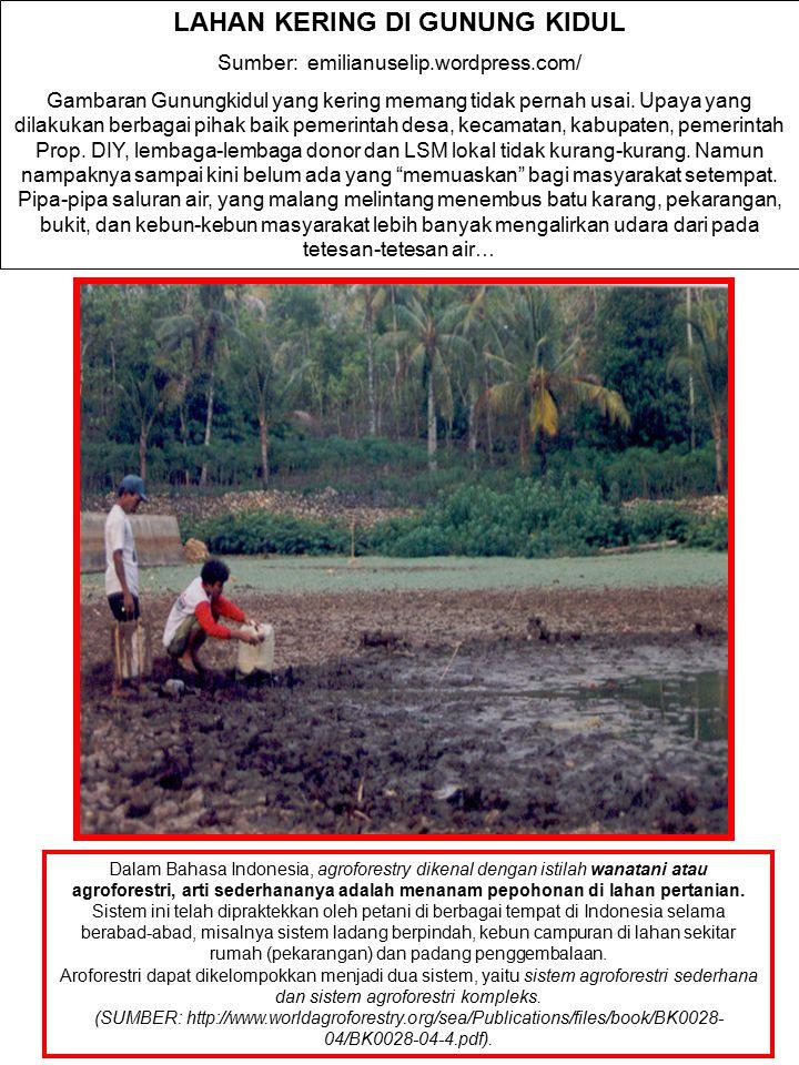 LAHAN KERING DI GUNUNG KIDUL Sumber: emilianuselip.wordpress.com/ Gambaran Gunungkidul yang kering memang tidak pernah usai. Upaya yang dilakukan berb