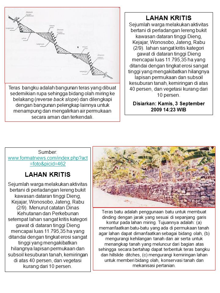 LAHAN KRITIS Sejumlah warga melakukan aktivitas bertani di perladangan lereng bukit kawasan dataran tinggi Dieng, Kejajar, Wonosobo, Jateng, Rabu (2/9