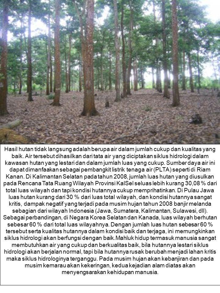 Hasil hutan tidak langsung adalah berupa air dalam jumlah cukup dan kualitas yang baik. Air tersebut dihasilkan dari tata air yang diciptakan siklus h