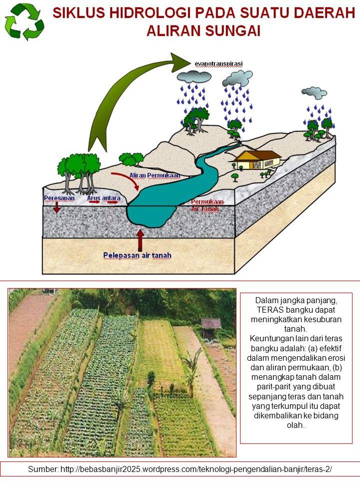 Dalam jangka panjang, TERAS bangku dapat meningkatkan kesuburan tanah. Keuntungan lain dari teras bangku adalah: (a) efektif dalam mengendalikan erosi