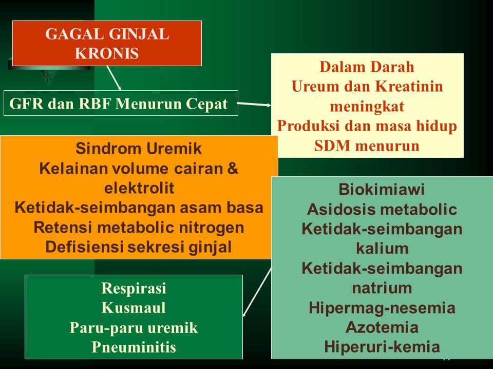 11 GAGAL GINJAL KRONIS GFR dan RBF Menurun Cepat Dalam Darah Ureum dan Kreatinin meningkat Produksi dan masa hidup SDM menurun Sindrom Uremik Kelainan