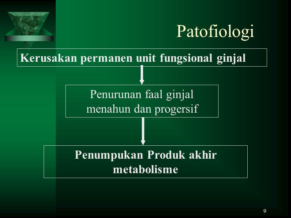 9 Patofiologi Kerusakan permanen unit fungsional ginjal Penurunan faal ginjal menahun dan progersif Penumpukan Produk akhir metabolisme