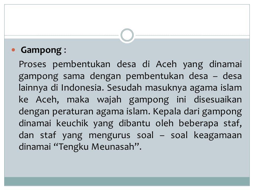 Gampong : Proses pembentukan desa di Aceh yang dinamai gampong sama dengan pembentukan desa – desa lainnya di Indonesia. Sesudah masuknya agama islam