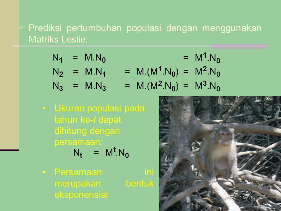  Prediksi pertumbuhan populasi dengan menggunakan Matriks Leslie: N 1 =M.N 0 N 2 =M.N 1 N 3 =M.N 3 =M.(M 1.N 0 )=M 2.N 0 =M.(M 2.N 0 )=M 3.N 0 =M 1.N