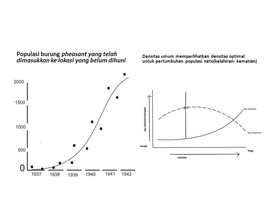 Populasi burung pheasant yang telah dimasukkan ke lokasi yang belum dihuni Densitas umum memperlihatkan densitas optimal untuk pertumbuhan populasi ne