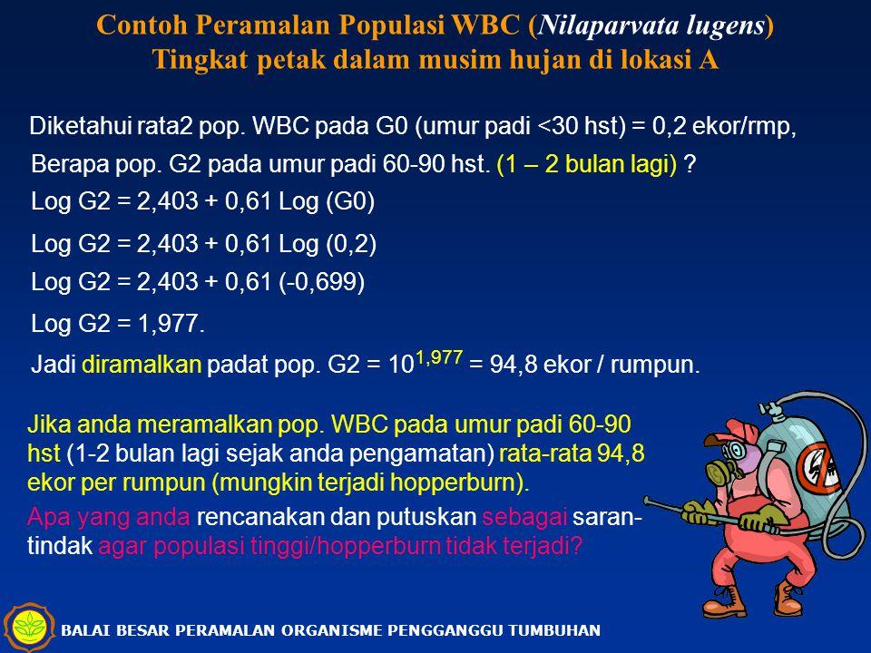 BALAI BESAR PERAMALAN ORGANISME PENGGANGGU TUMBUHAN Contoh Peramalan Populasi WBC (Nilaparvata lugens) Tingkat petak dalam musim hujan di lokasi A Dik