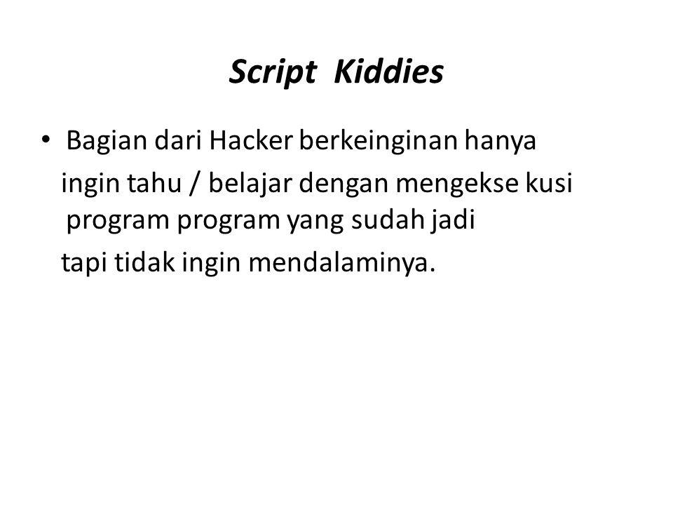 Script Kiddies Bagian dari Hacker berkeinginan hanya ingin tahu / belajar dengan mengekse kusi program program yang sudah jadi tapi tidak ingin mendalaminya.