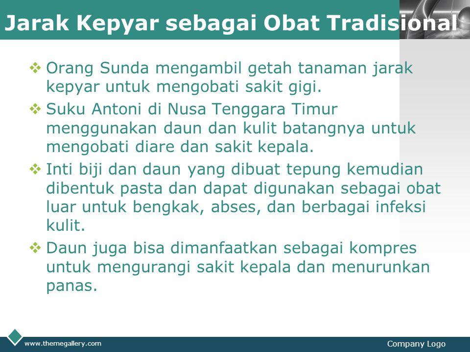 LOGO Jarak Kepyar sebagai Obat Tradisional  Orang Sunda mengambil getah tanaman jarak kepyar untuk mengobati sakit gigi.  Suku Antoni di Nusa Tengga