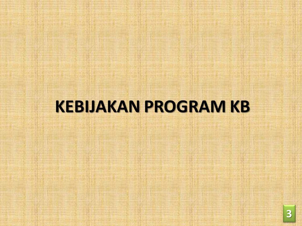 KEBIJAKAN PROGRAM KB 33