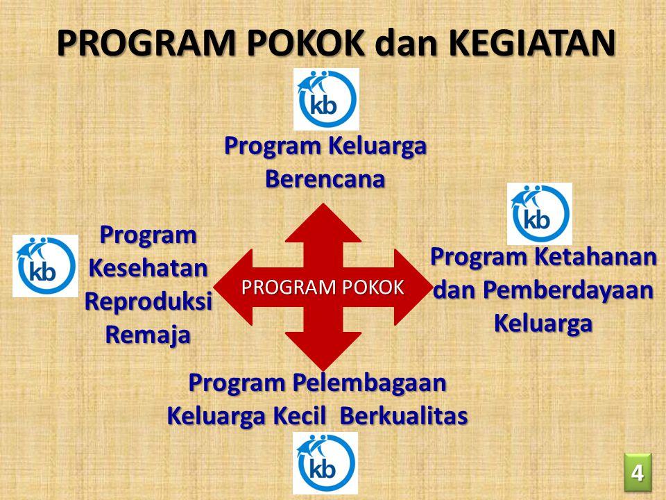 PROGRAM POKOK dan KEGIATAN 44 Program Keluarga Berencana Program Kesehatan Reproduksi Remaja Program Pelembagaan Keluarga Kecil Berkualitas Program Ke