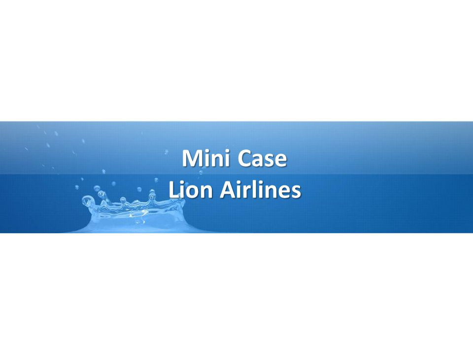 Mini Case Lion Airlines