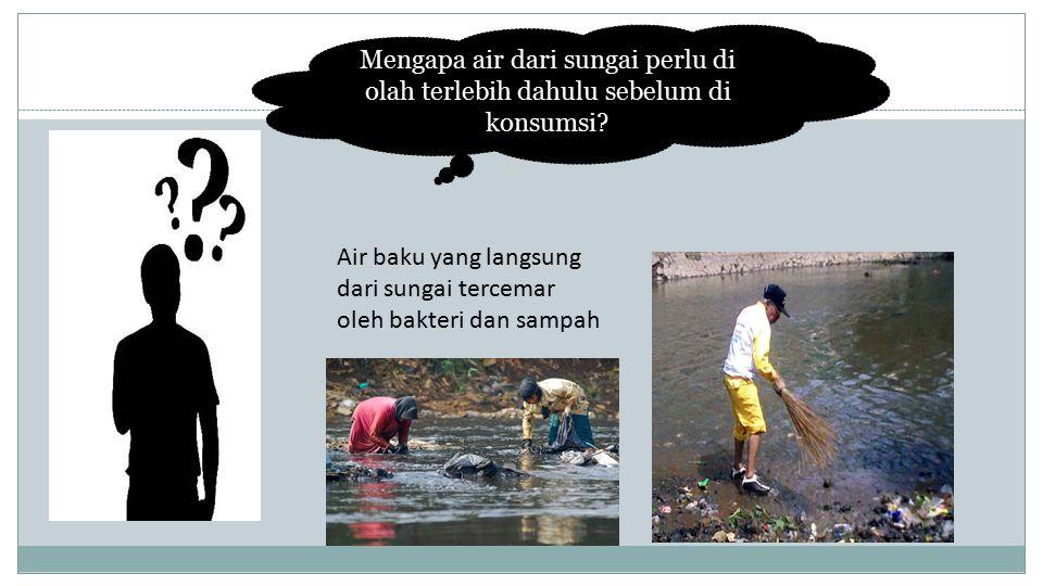 Mengapa air dari sungai perlu di olah terlebih dahulu sebelum di konsumsi.