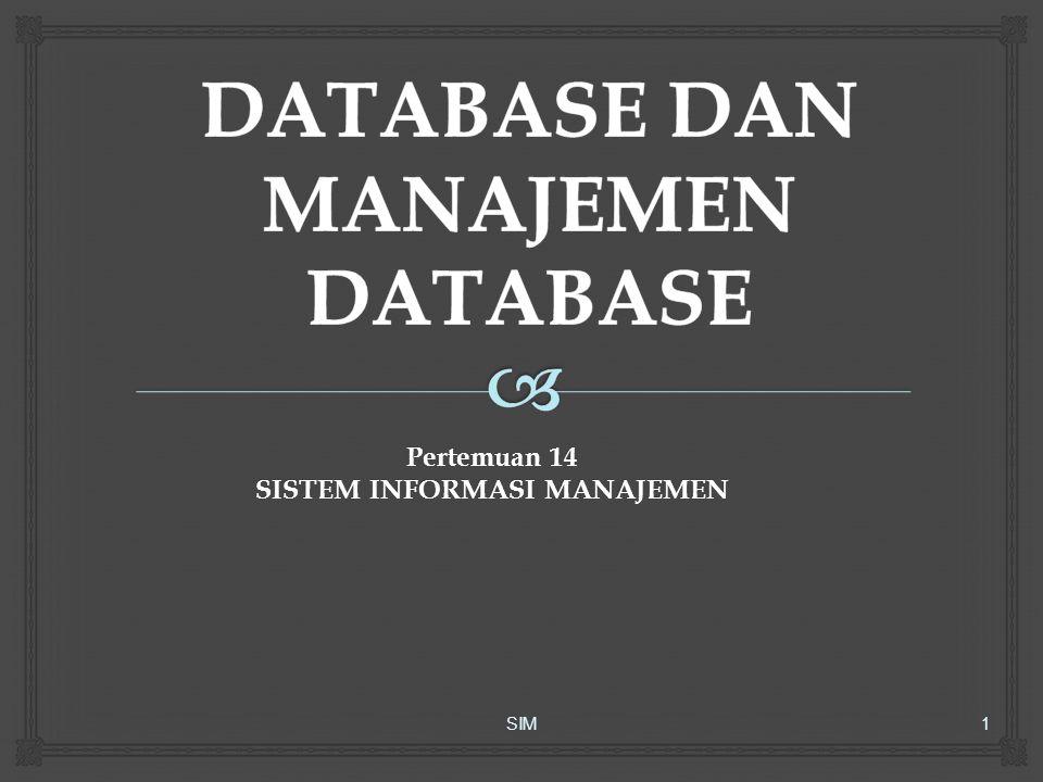  Suatu DBMS dapat:  Memperkecil pemborosan data  Mengijinkan kemudahan memperbarui file  Memaksimalkan integritas data dan indevendence  Menyederhanakan pemeliharaan  Meningkatkan produktivitas pemakai dan keamanan data  Menstandardisasi definisi data SIM22 Keunggulan DBMS