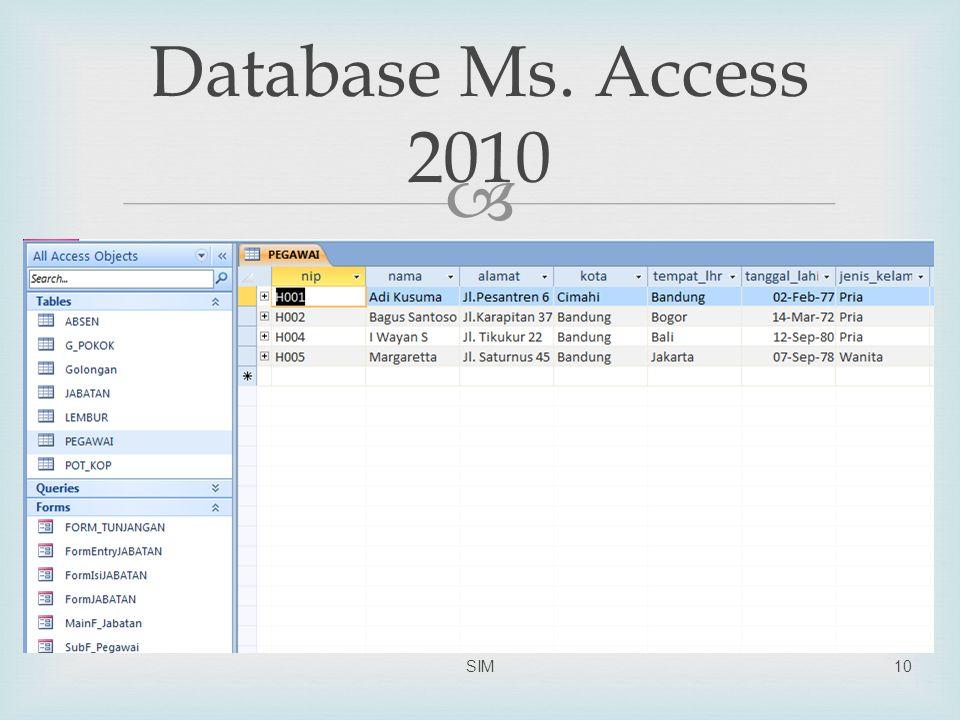  Database Ms. Access 2010 SIM10