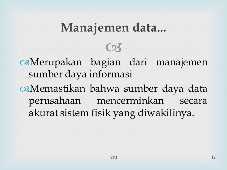   Merupakan bagian dari manajemen sumber daya informasi  Memastikan bahwa sumber daya data perusahaan mencerminkan secara akurat sistem fisik yang diwakilinya.