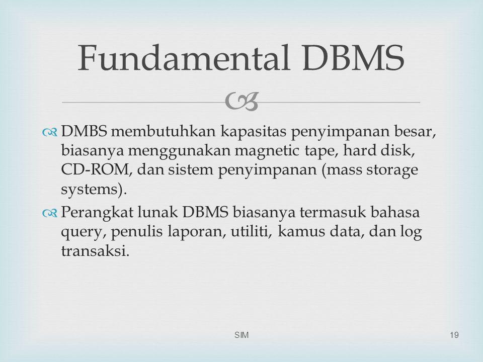   DMBS membutuhkan kapasitas penyimpanan besar, biasanya menggunakan magnetic tape, hard disk, CD-ROM, dan sistem penyimpanan (mass storage systems).
