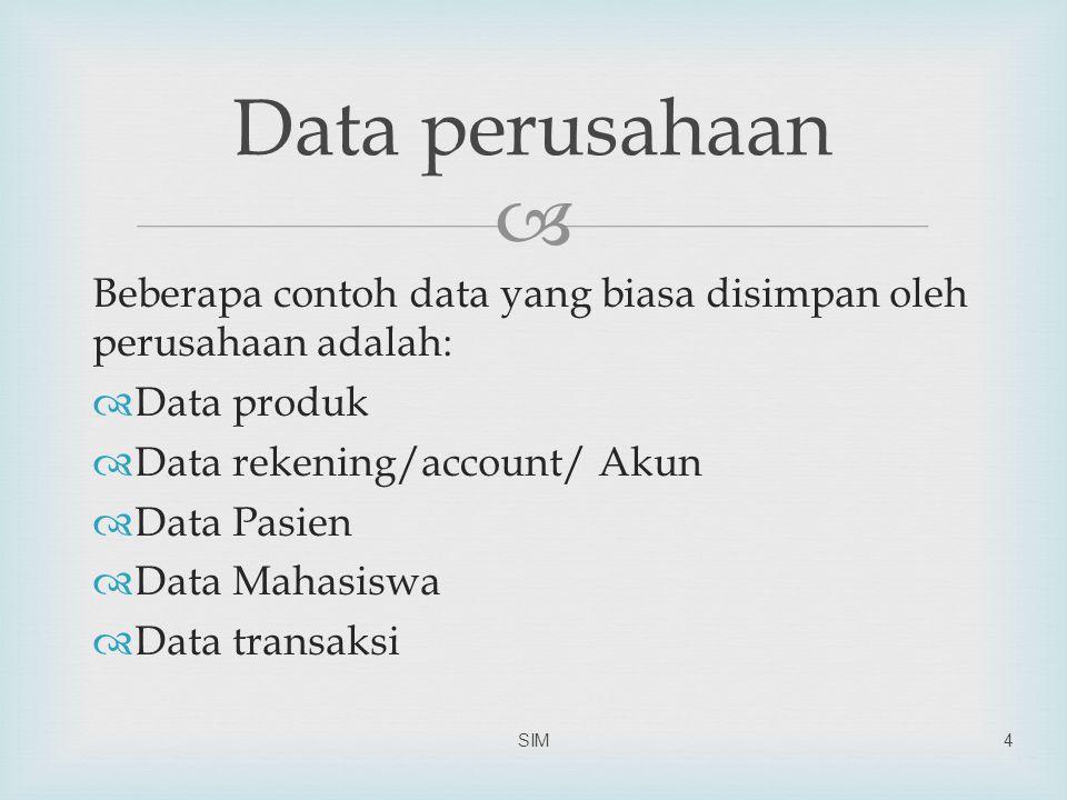  Beberapa contoh data yang biasa disimpan oleh perusahaan adalah:  Data produk  Data rekening/account/ Akun  Data Pasien  Data Mahasiswa  Data transaksi SIM4 Data perusahaan