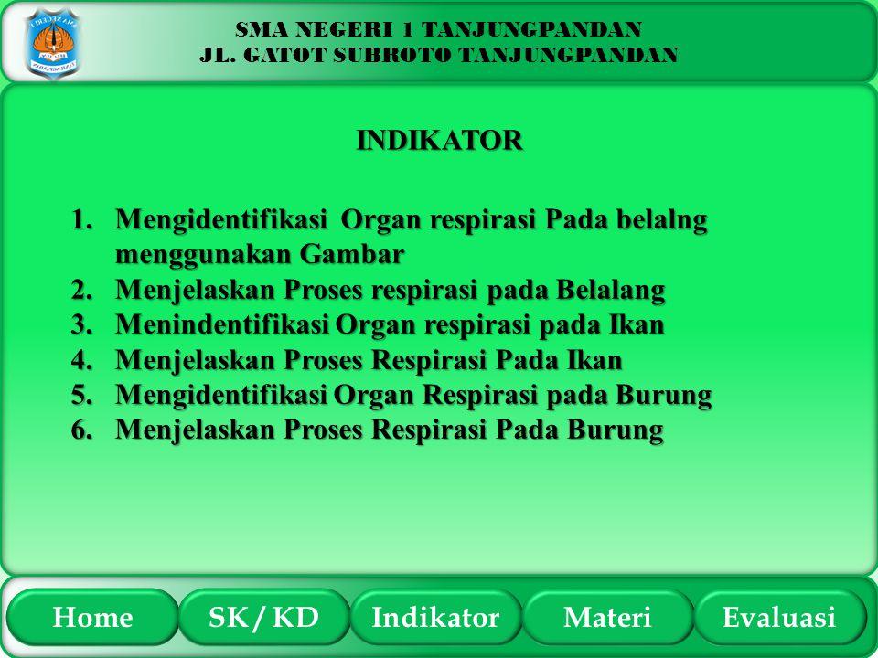 SMA NEGERI 1 TANJUNGPANDAN JL. GATOT SUBROTO TANJUNGPANDAN INDIKATOR 1.Mengidentifikasi Organ respirasi Pada belalng menggunakan Gambar 2.Menjelaskan