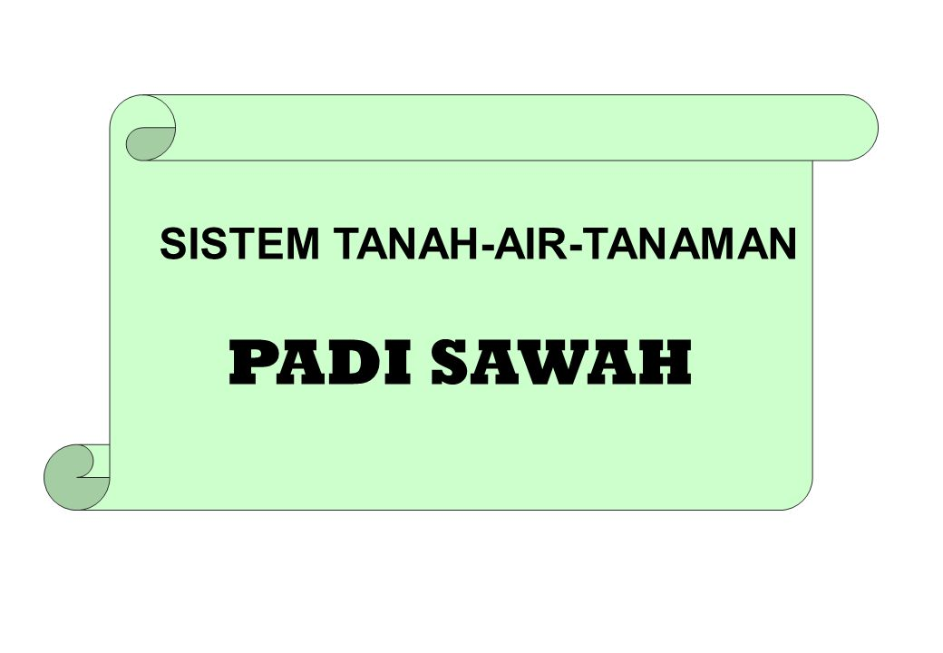 SISTEM TANAH-AIR-TANAMAN PADI SAWAH