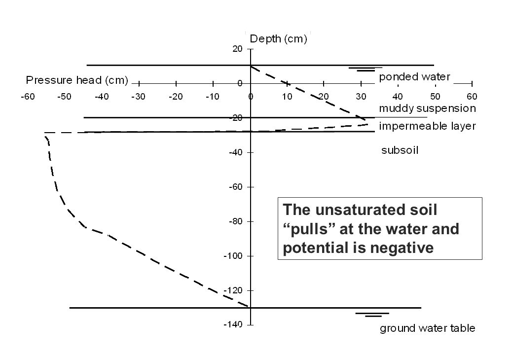 Water potential in the flooded rice soil The unsaturated soil pulls at the water and potential is negative