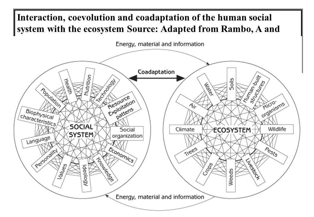 Coadaptation of modern social sytems and ecosystems