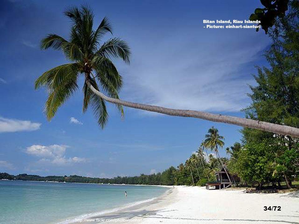 http://www.flickr.com/photos/10233969@N00/304313160/sizes/z/in/photostream/ Turi Beach Resort, Batam, Riau Islands - Picture: La-bella- marita 33/72