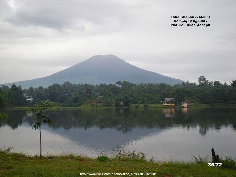 http://dronqiestz.files.wordpress.com/2009/02/riabintangolf.jpg Ria Bintan Golf Course, Riau Islands - Picture: dronqiestz.files.wordpress. com 35/72