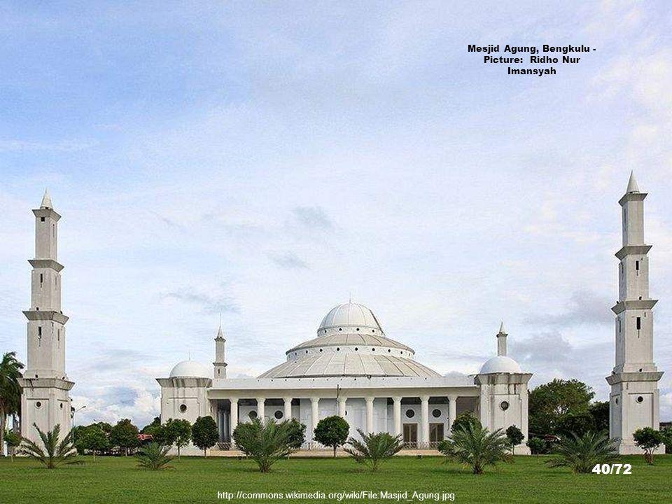 http://picasaweb.google.com/lh/photo/CxfEUU35CqYeHm7kTSfUkQ Lake Tes, Muara Aman, Lebong, Bengkulu - Picture: Gun 39/72