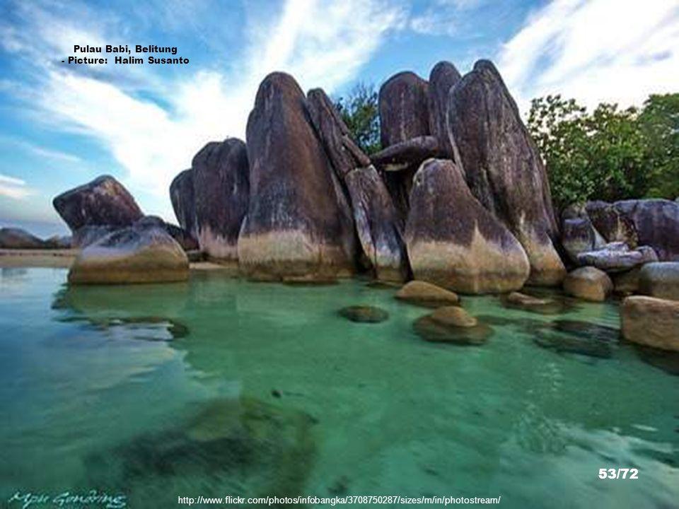 http://www.flickr.com/photos/infobangka/3540711115/sizes/m/in/photostream/ Pantai Bedukang, Bangka Tengah - Picture: bedsets 52/72