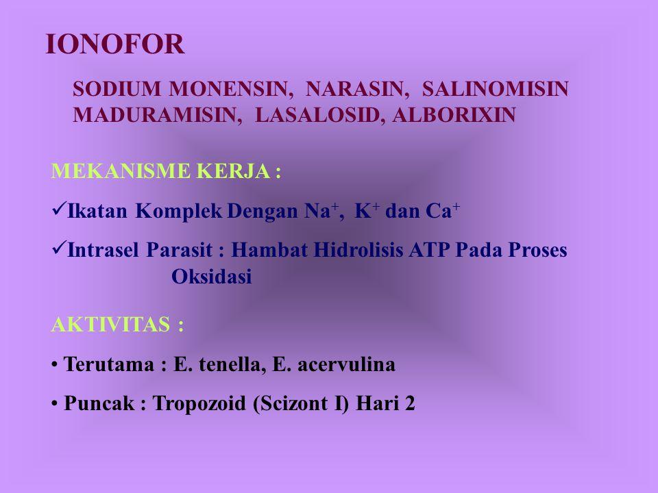 PIRIMIDIN Amprolium, Diaveridin, Pirimetamin, Ethopabate Mekanisme Kerja :  Sebagai Anti Tiamin MO Tiamin Suksinat Nitric Acid Cycle Oksidasi 2P-Suks