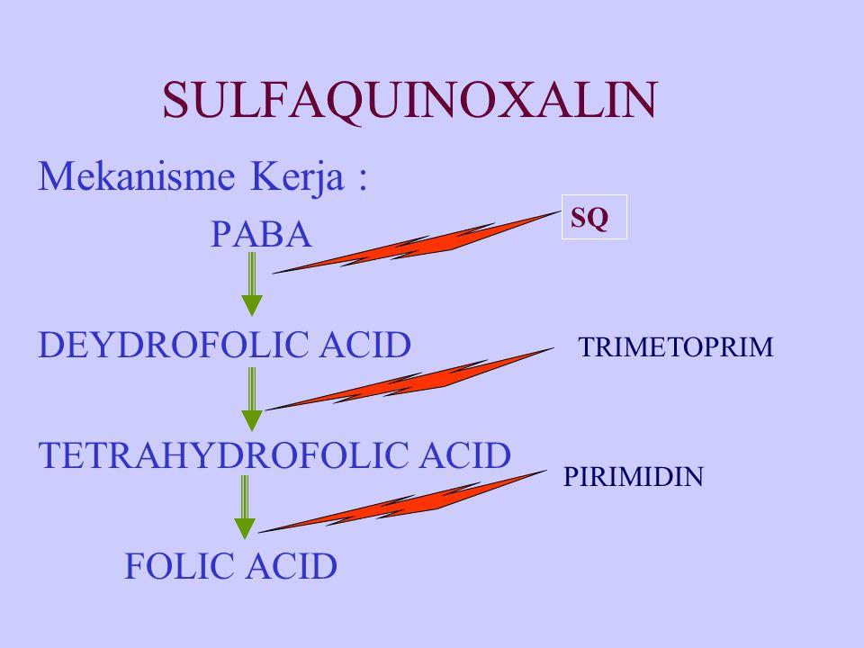 SULFAQUINOXALIN Mekanisme Kerja : PABA DEYDROFOLIC ACID TETRAHYDROFOLIC ACID FOLIC ACID SQ TRIMETOPRIM PIRIMIDIN