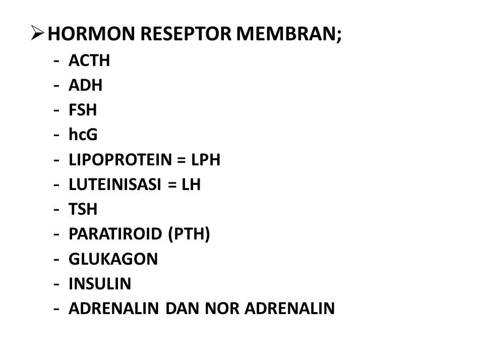  HORMON RESEPTOR MEMBRAN; - ACTH - ADH - FSH - hcG - LIPOPROTEIN = LPH - LUTEINISASI = LH - TSH - PARATIROID (PTH) - GLUKAGON - INSULIN - ADRENALIN DAN NOR ADRENALIN