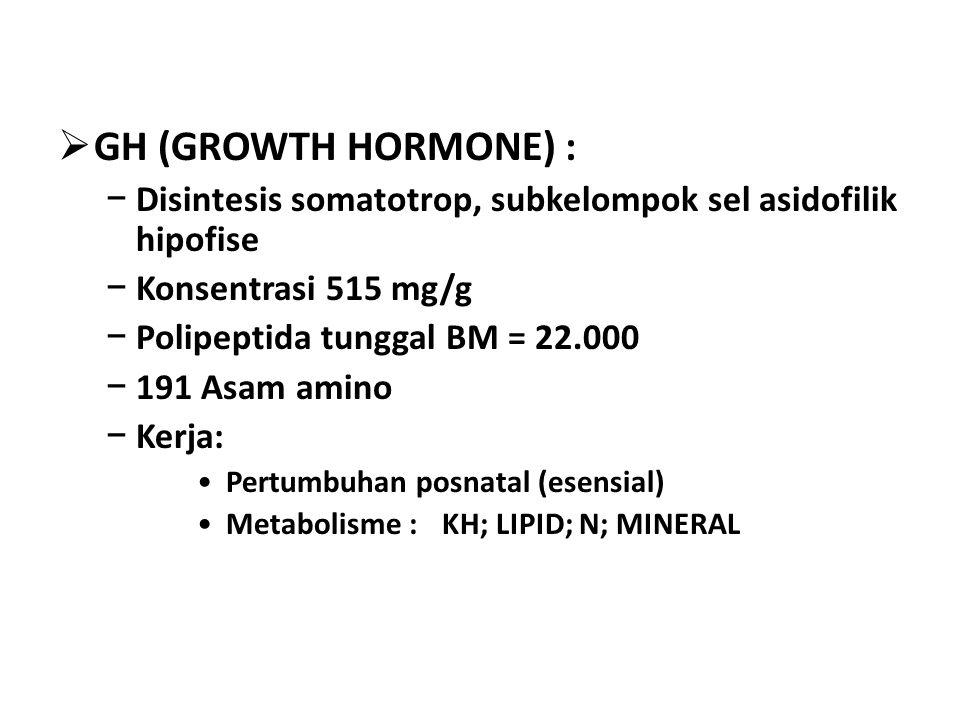  GH (GROWTH HORMONE) : − Disintesis somatotrop, subkelompok sel asidofilik hipofise − Konsentrasi 515 mg/g − Polipeptida tunggal BM = 22.000 − 191 Asam amino − Kerja: Pertumbuhan posnatal (esensial) Metabolisme : KH; LIPID; N; MINERAL