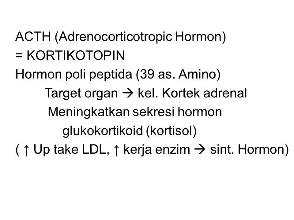 ACTH (Adrenocorticotropic Hormon) = KORTIKOTOPIN Hormon poli peptida (39 as.