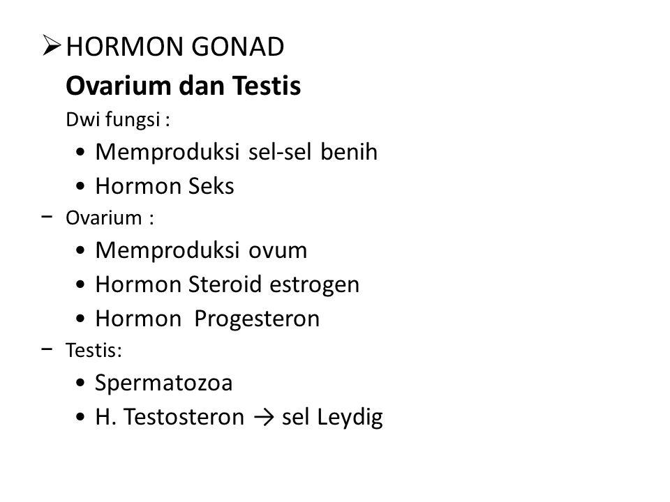  HORMON GONAD Ovarium dan Testis Dwi fungsi : Memproduksi sel-sel benih Hormon Seks − Ovarium : Memproduksi ovum Hormon Steroid estrogen Hormon Progesteron − Testis: Spermatozoa H.