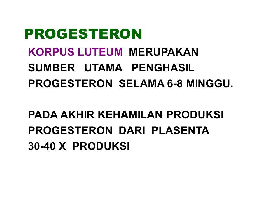 PROGESTERON KORPUS LUTEUM MERUPAKAN SUMBER UTAMA PENGHASIL PROGESTERON SELAMA 6-8 MINGGU.
