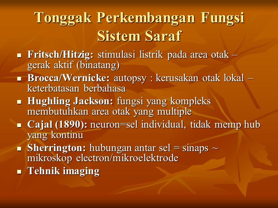 Tonggak Perkembangan Fungsi Sistem Saraf Fritsch/Hitzig: stimulasi listrik pada area otak – gerak aktif (binatang) Fritsch/Hitzig: stimulasi listrik p