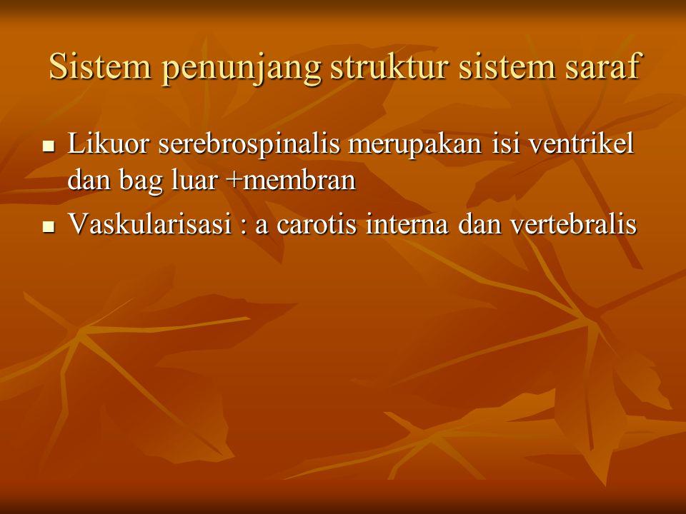 Sistem penunjang struktur sistem saraf Likuor serebrospinalis merupakan isi ventrikel dan bag luar +membran Likuor serebrospinalis merupakan isi ventr